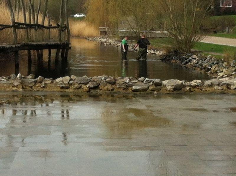 Reinigungsarbeiten im Teich im Wasserpark