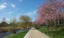 Der Frühling hinzerlässt jetzt auch im Wasserpark deutliche Spuren.