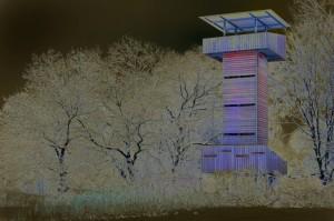 Illuminierter Beobachtungsturm an der Ökologiestation. Foto: Ralf Sänger
