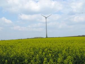 Mehr als ein Windrad ist laut Gutachten auf dem Galgenberg nicht möglich.