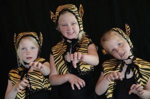 Tiger haben in Hollywood-Filen oft eine Rolle gespielt. (Fotos: Ballettschule Hetkamp)