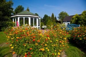 Im idyllischen Rosengarten serviert Sigrid Brandt eine Rosenbowle.