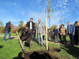 """Im Oktober fand mit Vertretern der vier Bergkamener Partnerstädte eine Baumpflanzaktio """"außer der Reihe"""" statt."""
