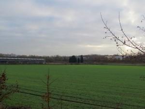 Auf diesem Gelände zwischen Kanal und Westenhellweg könnten Öko-Ferienhäuser errichtet werden.
