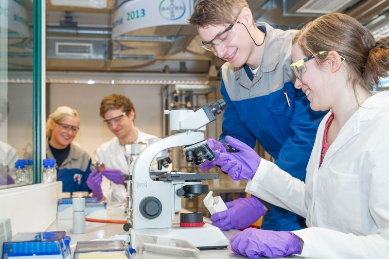 Die Bayer-Auszubildenden Sarah Michel (l.) und Tim Vorhoff unterstützen Michael Lahme (2. v. l.) und Vera Schulte-Bocholt bei der Versuchsauswertung am Mikroskop. (Foto: Bayer)