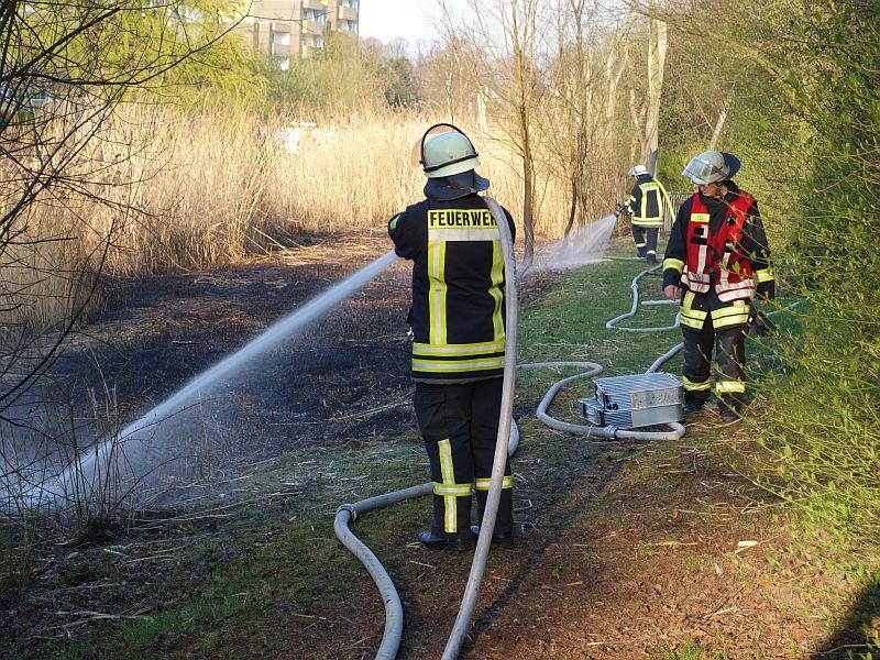 Die Feuerwehrleute der Löschgruppe Weddinghofen hatten den Schilfbrand im Wasserpark schnell im Griff.