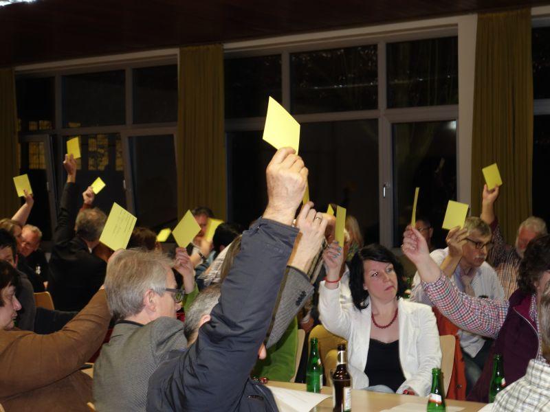 Abstimmung übers Wahlprogramm