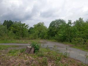 So sieht das Grundstücke heute aus.