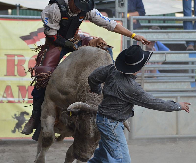 Rodeo21