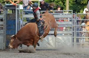 Kurzes Vernügen auf dem Rücken des Rodeo-Bullen.