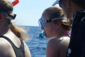 Die Jugendlichen durften sich nur den Delfinen im Wasser näheren.