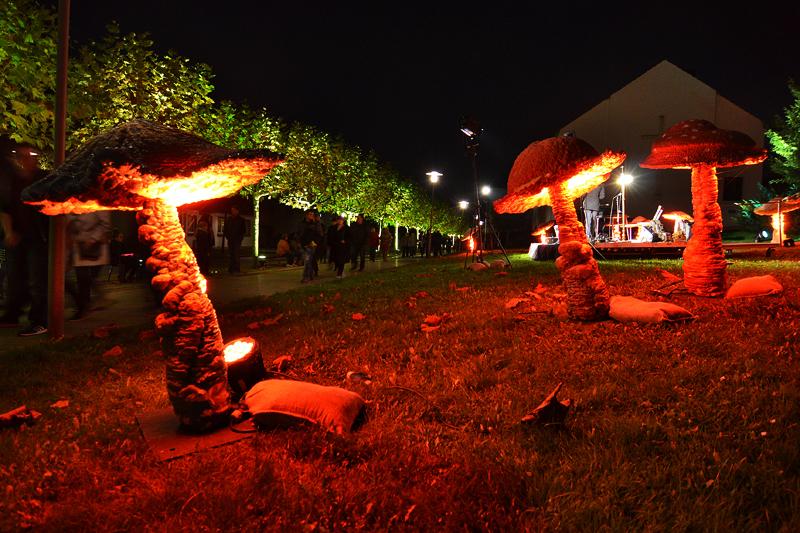 GSW Lichtermarkt 2014 (Foto - Patrick Opierzynski) 13
