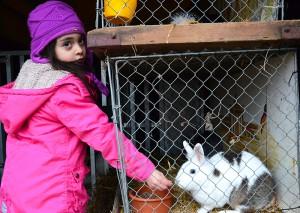 Die Tiere faszinierten nicht  nur die Kinder.