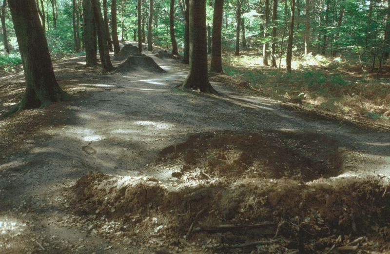 Die sichtbaren Reste der Bumannsburg in Rünthe im Wald am Ostenhellweg gegenüber von Kaufland.