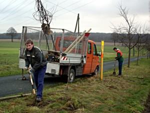 Die Mithilfe bei Pflanzarbeiten ist Bestandteil der Tätigkeiten im Freiwilligen Ökologischen Jahr. Foto: Kreis Unna