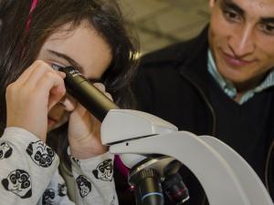 Blattstrukturen und Libellenlarven offenbarte das Mikroskop im Biologieraum.