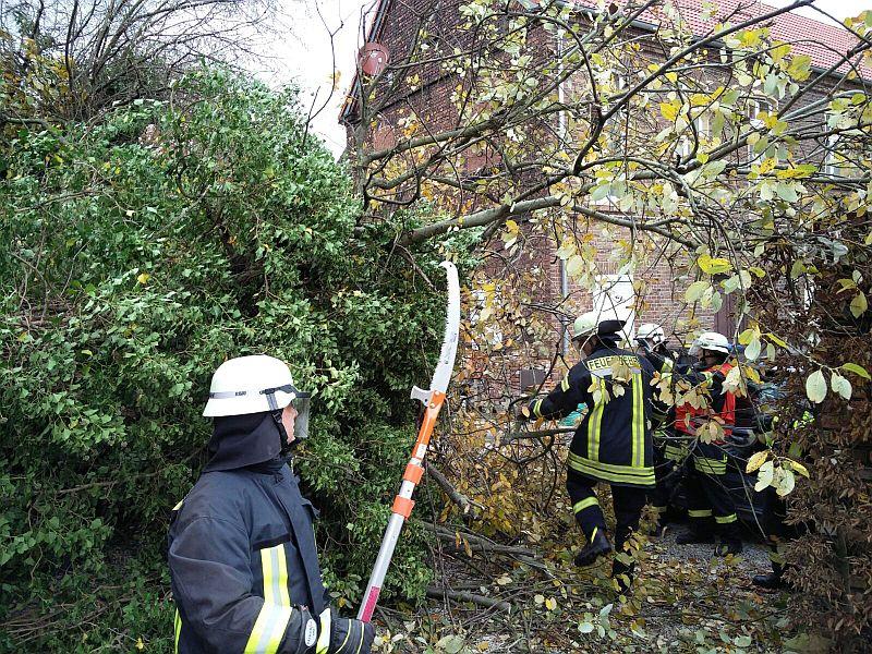 Die Feuerwehr Werne befreit einen Kleintransporter vom Geäst einer heruntergstürzten Baumkrone. Foto: Feuerwehr Werne