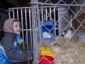 Die Tiere faszinierten die Kinder.