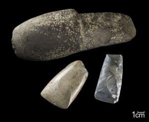Für Laien mögen sie auf den ersten Blick wie simple Steine aussehen. Die Archäologen erkennen sofort, dass es sich hier um Beilklingen handelt, die in der Jungsteinzeit von den ersten Bauern als Werkzeuge benutzt wurden. Foto: LWL/H. Menne