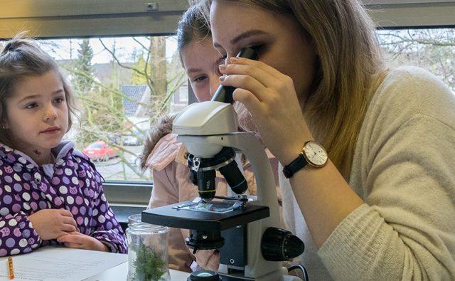 An den Mikroskopen warteten Wunderwelten darauf, entdeckt zu werden.