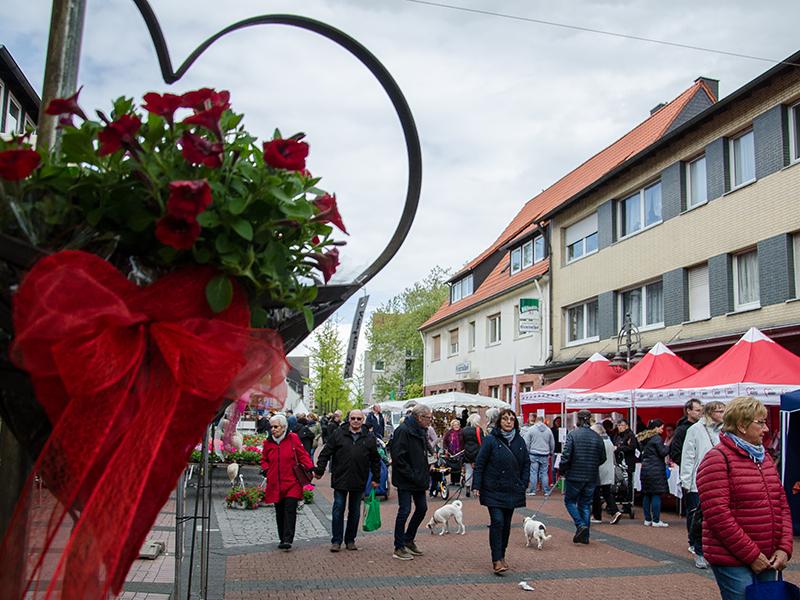Blumenbörse1