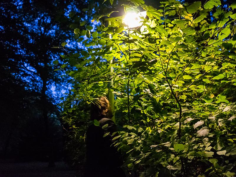 Streetlight_9